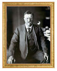 Theodore Roosevelt Photograph in a Aged Gold Frame