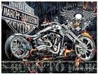 Harley Davidson Motorcycle Born To Ride Painting Paint By Numbers Kit DIY