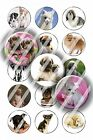 Pre-Cut 1 Inch Circle - Puppy Dogs Bottle Cap Images of Your Choice