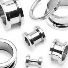 Pair of Stainless Steel Screw Fit Flesh Hollow Tunnels Flares Plugs E171