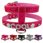 Personalized Sequins PU Leather Dog Puppy Harness Free Name Rhinestone Letters