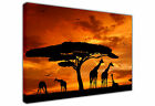 AFRICAN LANDSCAPE AND GIRAFFE ON LARGE CANVAS WALL ART / PHOTO / PRINT / PICTURE