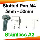 M4 Stainless A2 Slotted Pan Head Machine Screws