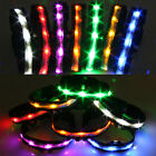 Unique Cute LED Flashing Pet Dog Chains Night Walking Safety Multi-Color Collars