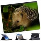 Hedgehog Folio Wallet Leather Case For iPad 2, 3 & 4