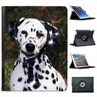 Dalmatian Dog Folio Wallet Leather Case For iPad 2, 3 & 4
