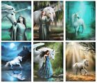 Unicorn Canvas Prints by Anne Stokes - 11 Mystical Magical Wall Hanging Designs