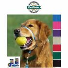 PetSafe Gentle Leader Head Collar No Pull, All Sizes, 7 Colors w/ Training DVD
