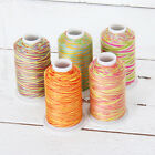 Внешний вид - VARIEGATED MULTICOLOR 100% COTTON THREAD 600M BY THE SPOOL - 22 COLORS AVAILABLE