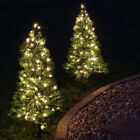 Kringle Traditions Winchester Fir Prelit Walkway Tree - Set of 2