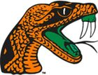 Florida A&m Rattlers #3 Ncaa College Vinyl Sticker Decal Car Window Wall