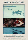 North East Coast, Railway Travel Poster reproduction