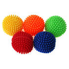 Chiwava Pet Vinyl Spiney Ball Squeaky Dog Toy Spiny Puppy Chew Fetch Play