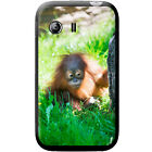 Orangutan Monkey Primates Animal Hard Case For Samsung Galaxy Y (S5360)