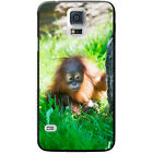 Orangutan Monkey Primates Animal Hard Case For Samsung Galaxy S5 (G900)