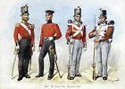 Queen's Own Royal West Kent Regiment Uniforms No.7 - 1852