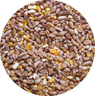 Mixed Corn 10kg 5kg 1.8kg 700g 500g POULTRY FEED Food Chickens Ducks Hen Geese