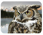 CUSTOM GLASS CUTTING BOARD PERSONALIZED-2 SIZES-OWL WITH MOUNTAIN LAKE-ANY TEXT