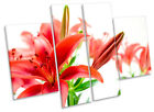 Tiger Lily Floral Flower CANVAS WALL ART MULTI Panel Print Picture