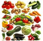 Vegetable Seeds Organic Non-GMO Healthy Garden Plant Heirloom Super multi choice