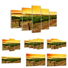 GLASS PRINTS 30 SHAPES Picture Countryside Vineyard Sunset 0116 UK