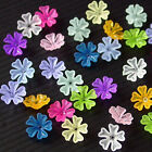 Acrylic Flower Beads, Mixed Matte Colors, 16mm x 6mm