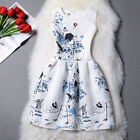 Summer Women's Chinese crane ink and wash painting Sleeveless Party A line Dress