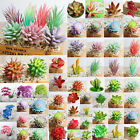 Artificial Plants Desert Craft Floral Succulents Fake Flowers Home Office Decor