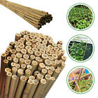 2ft- 8ft Bamboo Garden Stick Cane Heavy Duty Strong Quality Plant Support Flower