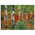 Poster Print Wall Art entitled Aspen Trees And Fireweed, Kananaskis Country,