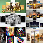 5PC HD Canvas Print Home Decor Wall Art Animal Design Painting Picture Unframed
