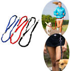Nylon Elastic Pet Dog Puppy Leash Lead Strap Rope Waist Belt For Training Runnin