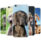 Weimaraner Vorstehhund Grey Ghost Dog Hard Case Phone Cover for Apple Phones