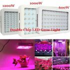 600W 1000W 1200W Full Spectrum LED Grow Light For Veg Hydro Bloom Indoor Plant
