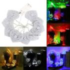 LED 10 Heart Lights String Lights for Party Wedding Christmas NC89