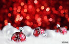 US Stock 10X10FT 5X7FT Christmas Vinyl Backdrop Background Photo Props Landscape