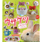 Usaketsu Odekake Shimasita Rabbit Hiding Mini Figure Collection