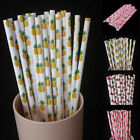 25pcs Fruit Biodegradable Paper Drinking Straws Striped Birthday Party Wedding