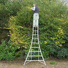 Henchman Adjustable Tripod Ladder | Sizes 6ft - 16ft | COLLECTION ONLY