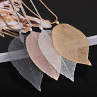 4 Colors Special Natural Real Leaves Gilded Sweater Pendant Necklace Long Chain