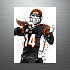 Andy Dalton Cincinnati Bengals Poster FREE US SHIPPING $15.0 USD on eBay