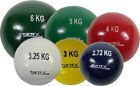 Athletic Sports Cast Iron Outdoor Shot - Shot-put Practice Training -Sold Single
