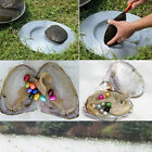 1PCS Oyster With Colored Edison Pearl Edison Pearl Mini Monster Oyster 20pcs