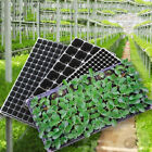 72/105/128 Cell Seedling Starter Tray Seed Germination Plant Propagat FS