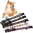 Halloween Nylon Pet Cat Dog Collar Safety Bell Necklace Strap Clip Adjustable US