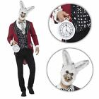 Adult Mens Evil White Rabbit March Hare Easter Wonderland Halloween Costume