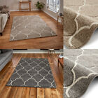 New Ventura Hand Carved Floor Rugs Stain Resistant Flatweave Thick Think Rugs