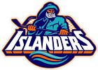 "New York Islanders NHL Color Die Cut Vinyl Decal - You Choose Size 2""-38"" $4.95 USD on eBay"