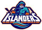"New York Islanders NHL Color Die Cut Vinyl Decal - You Choose Size 2""-38"" $6.49 USD on eBay"