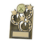 Budget Multi sport Plaque Award Hockey,Chess, Achievement, Pool - FREE Engraving